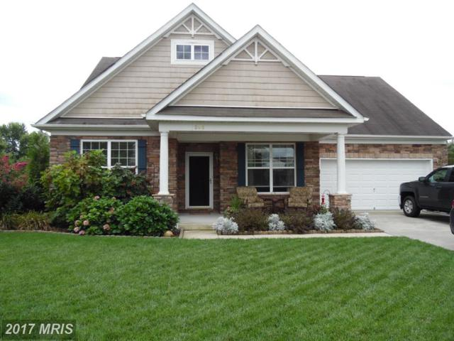 306 Carville Drive, Millington, MD 21651 (#KE10052271) :: Pearson Smith Realty