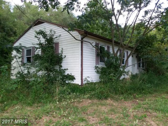 11167 Oak Lane, Worton, MD 21678 (#KE10052881) :: Pearson Smith Realty
