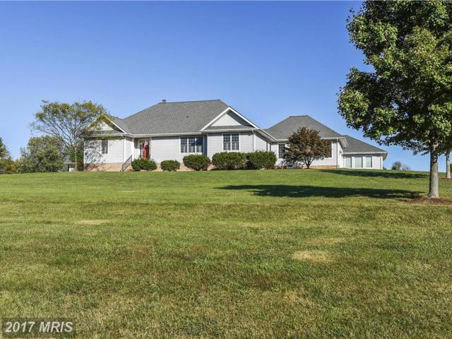 8954 Orchard Drive, Chestertown, MD 21620 (#KE10090243) :: Pearson Smith Realty