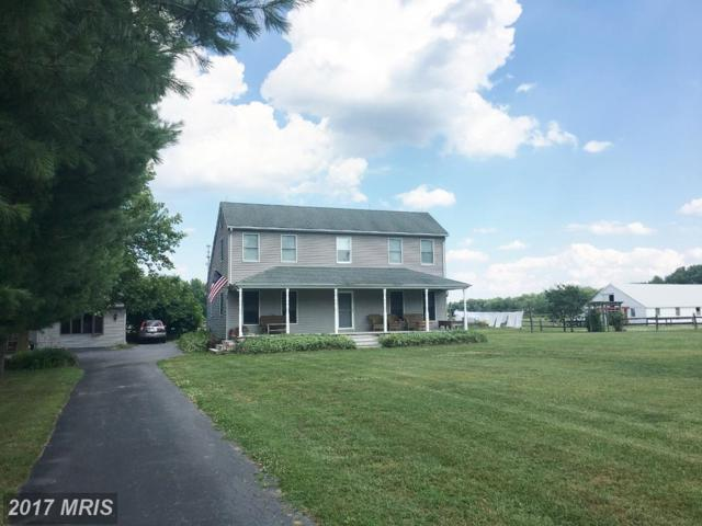 31914 Lambson Forest Road, Galena, MD 21635 (#KE10100720) :: Pearson Smith Realty