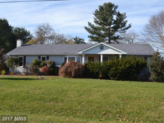 7982 Radcliffe Road, Chestertown, MD 21620 (#KE10110233) :: Pearson Smith Realty