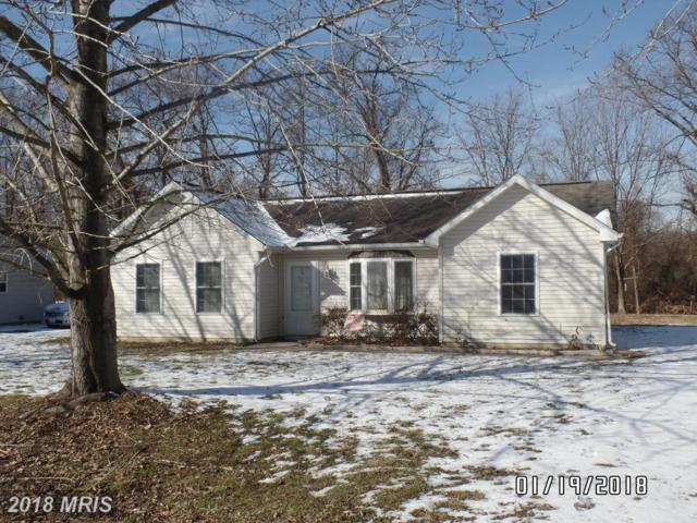 25030 Travis Trail, Worton, MD 21678 (#KE10136401) :: Pearson Smith Realty