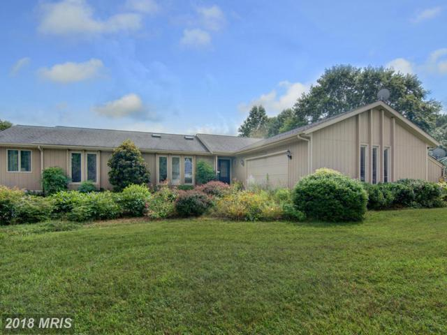 7850 Radcliffe Road, Chestertown, MD 21620 (#KE10319478) :: Maryland Residential Team