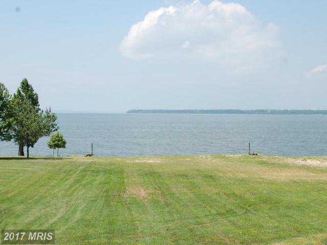 17 Potomac Landing Drive, King George, VA 22485 (#KG10008745) :: Pearson Smith Realty