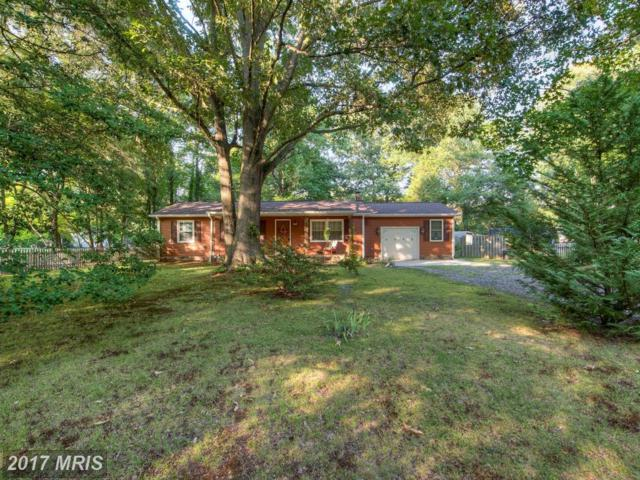 4305 Chesapeake Place, King George, VA 22485 (#KG10009572) :: Pearson Smith Realty