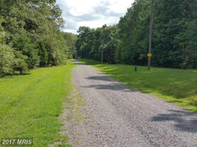 Lot 2 Attopin Lookout Road, King George, VA 22485 (#KG10042699) :: Pearson Smith Realty