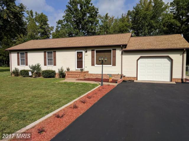 4417 Pamlico Drive, King George, VA 22485 (#KG10061156) :: United Real Estate Premier