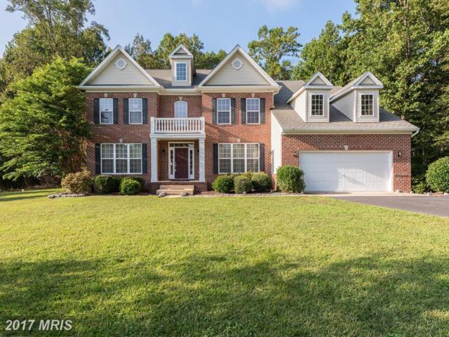 8445 Gray Fox Lane, King George, VA 22485 (#KG10061883) :: Green Tree Realty