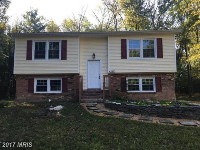 15361 Delaware Drive, King George, VA 22485 (#KG10082325) :: RE/MAX Cornerstone Realty