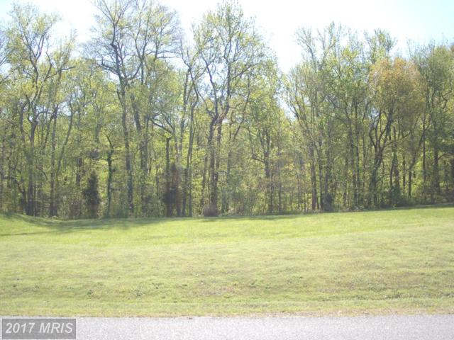 58 Marineview Drive, King George, VA 22485 (#KG10090840) :: Pearson Smith Realty