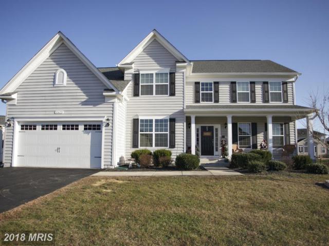 11675 Hopyard Drive, King George, VA 22485 (#KG10217858) :: RE/MAX Gateway