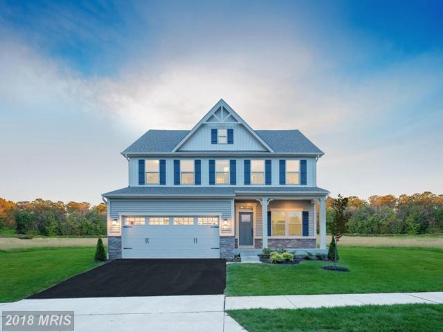 1113 Spinnaker Lane, King George, VA 22485 (MLS #KG10246983) :: Explore Realty Group