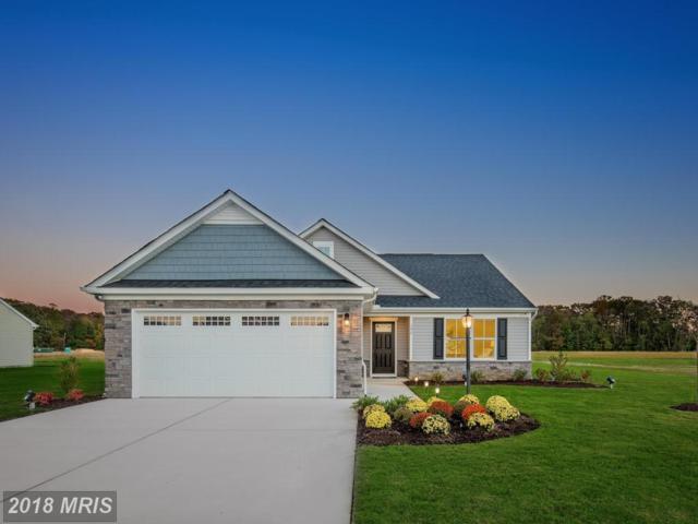 1112 Emerald Drive, King George, VA 22485 (#KG10326787) :: Green Tree Realty
