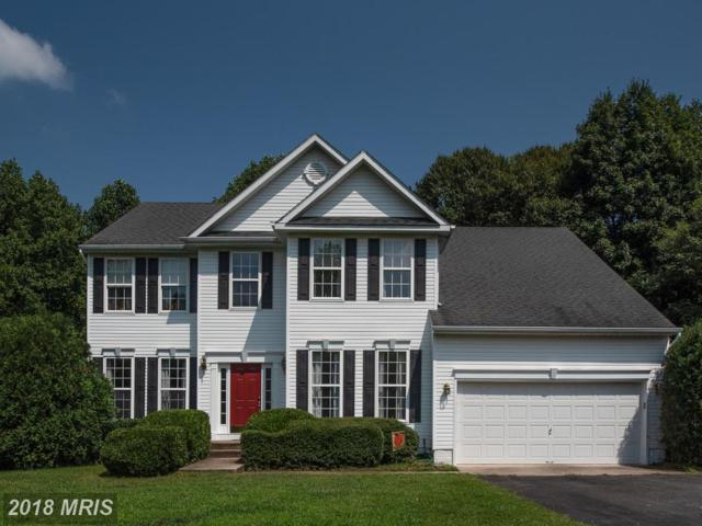 8157 Zepp Drive, King George, VA 22485 (#KG10333099) :: Colgan Real Estate