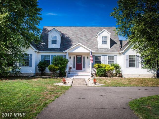 12131 Cleydael Boulevard, King George, VA 22485 (#KG9989114) :: Coldwell Banker Elite