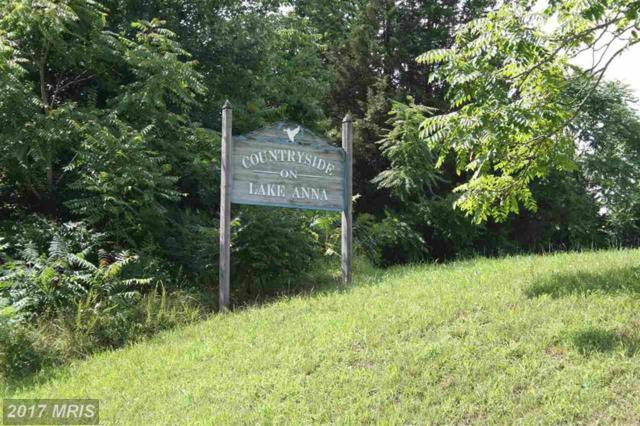Mountain View Rd, Mineral, VA 23117 (#LA10033430) :: Pearson Smith Realty