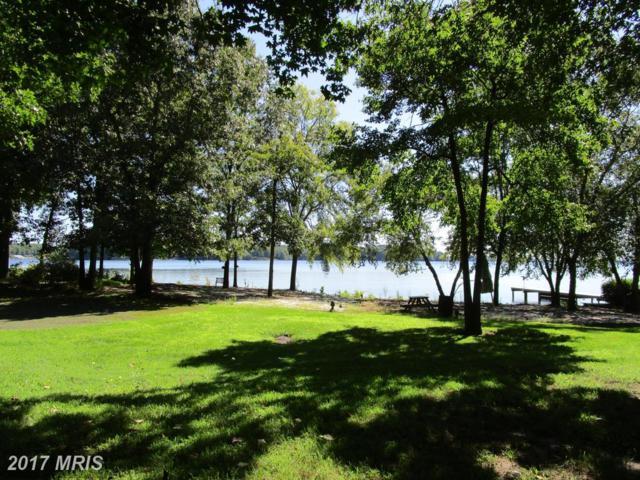984 Tall Pines Dr, Mineral, VA 23117 (#LA10052175) :: Pearson Smith Realty