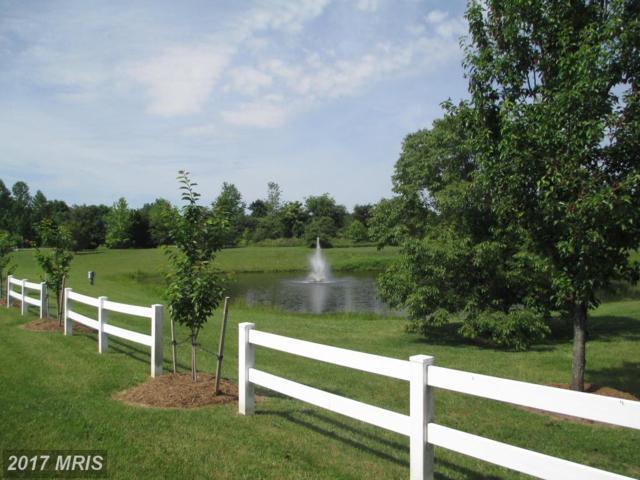Lake Forest Dr, Mineral, VA 23117 (#LA10056931) :: Pearson Smith Realty