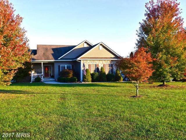 1258 Eastham Road, Bumpass, VA 23024 (#LA10087672) :: Colgan Real Estate