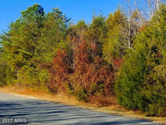 Paddock Lane, Louisa, VA 23093 (#LA10114994) :: RE/MAX Cornerstone Realty
