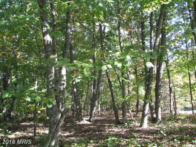 Tall Pines Dr., Mineral, VA 23117 (#LA10134299) :: Pearson Smith Realty