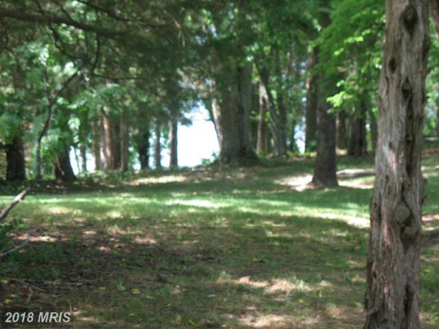 Lakeshore Drive S, Louisa, VA 23093 (#LA10139081) :: Pearson Smith Realty