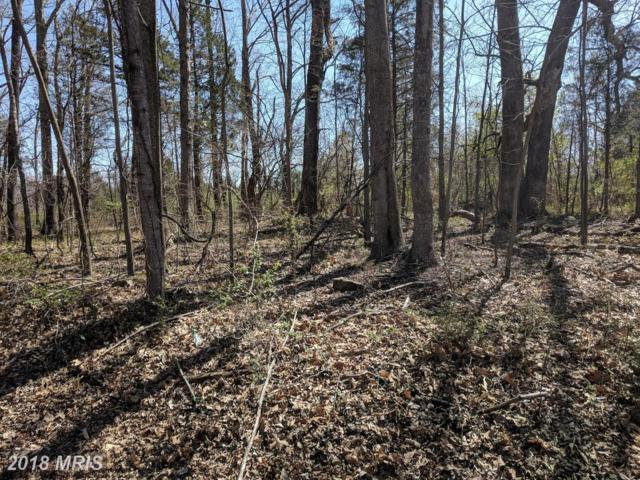 LOT 52 Mountain View, Mineral, VA 23117 (#LA10206567) :: The Gus Anthony Team