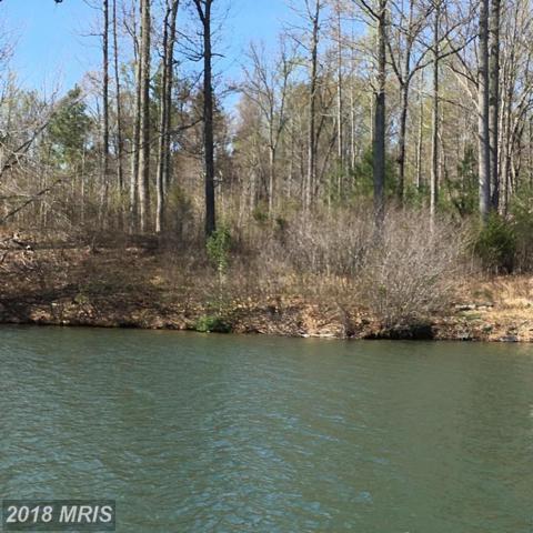 Lake Forest Dr, Mineral, VA 23117 (#LA10216748) :: The Nemerow Team