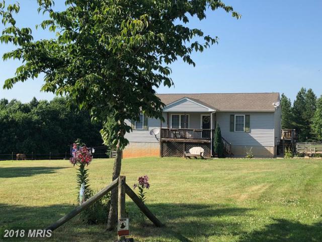 855 Johnson Road, Mineral, VA 23117 (#LA10298548) :: Blackwell Real Estate