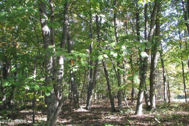 Tall Pines Dr., Mineral, VA 23117 (#LA9882811) :: LoCoMusings