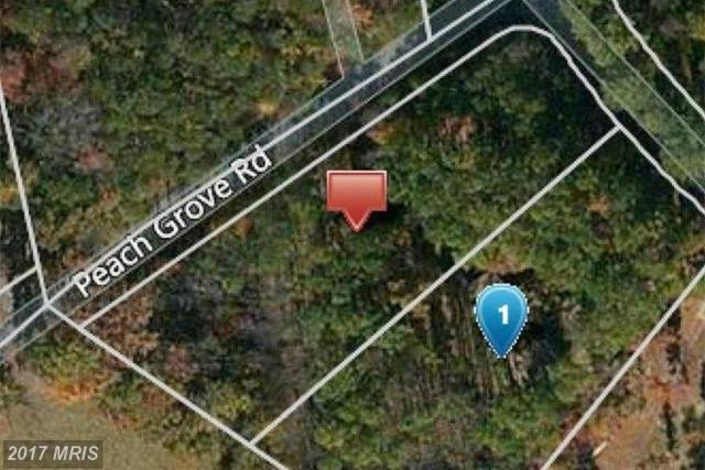 Miltons Lane, Louisa, VA 23093 (#LA9949260) :: LoCoMusings