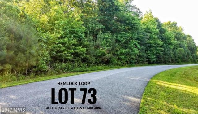 73 Hemlock Loop, Mineral, VA 23117 (#LA9968584) :: LoCoMusings