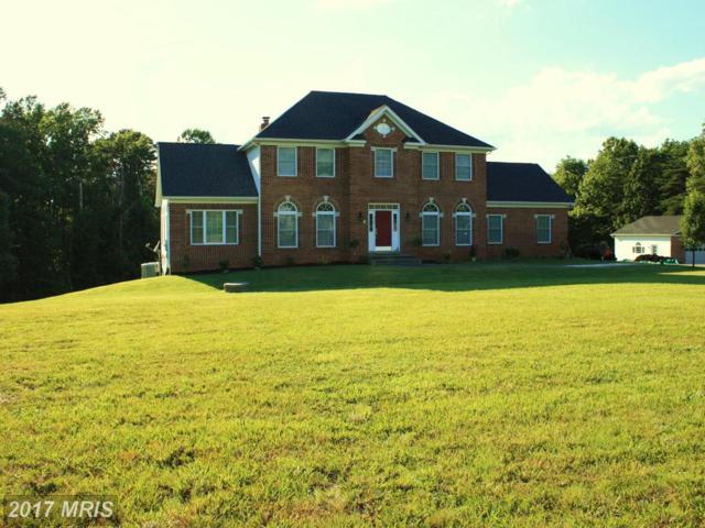 2161 Chopping Road, Mineral, VA 23117 (#LA9989590) :: Coldwell Banker Elite