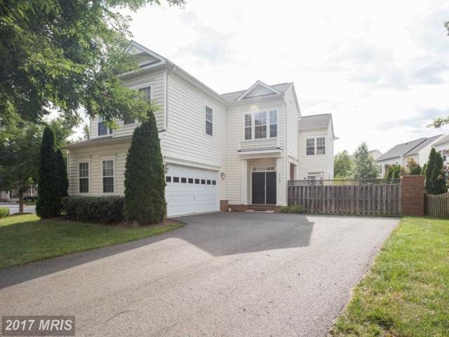21988 Stonestile Place, Broadlands, VA 20148 (#LO10002423) :: Wicker Homes Group