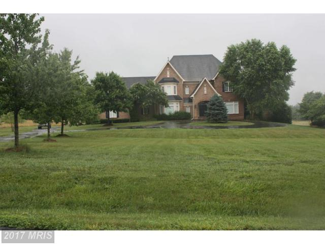 40182 Browns Creek Place, Leesburg, VA 20175 (#LO10002620) :: Pearson Smith Realty