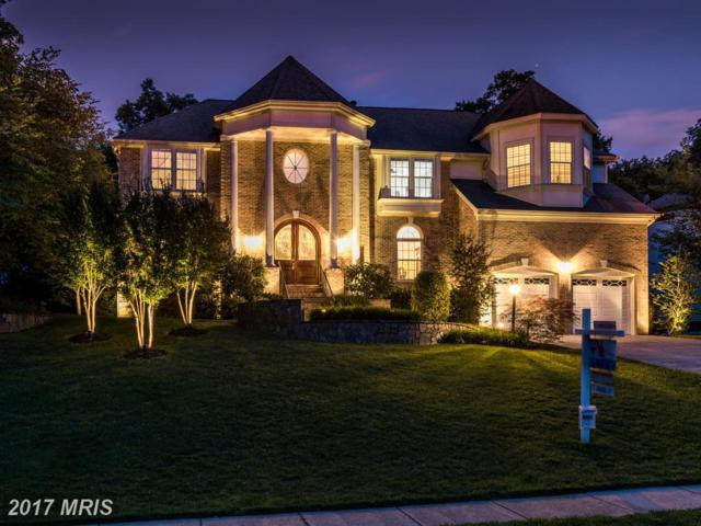 21100 Stonecrop Place, Ashburn, VA 20147 (#LO10002961) :: Wicker Homes Group