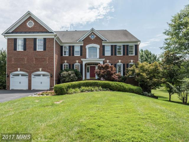 21922 Hyde Park Drive, Ashburn, VA 20147 (#LO10003098) :: Pearson Smith Realty