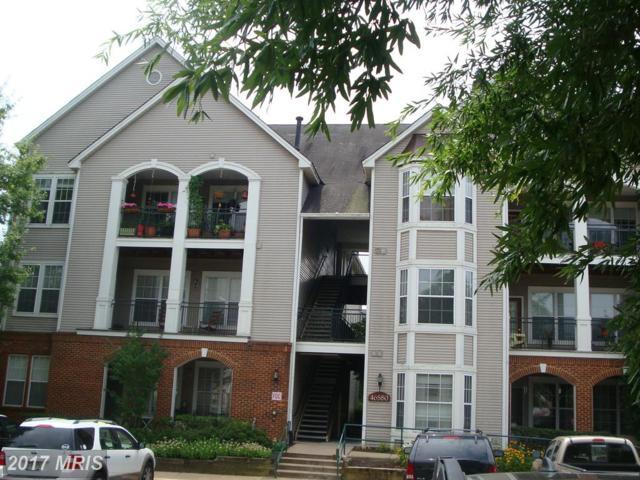 46580 Drysdale Terrace #303, Sterling, VA 20165 (#LO10004280) :: LoCoMusings
