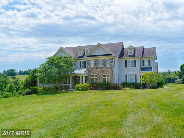 17156 Silver Charm Place, Leesburg, VA 20176 (#LO10004670) :: Pearson Smith Realty