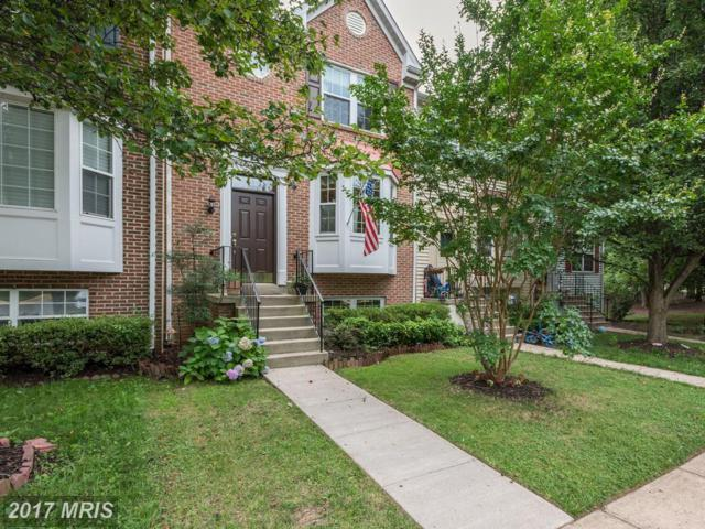 43225 Bent Twig Terrace, Ashburn, VA 20147 (#LO10005281) :: LoCoMusings