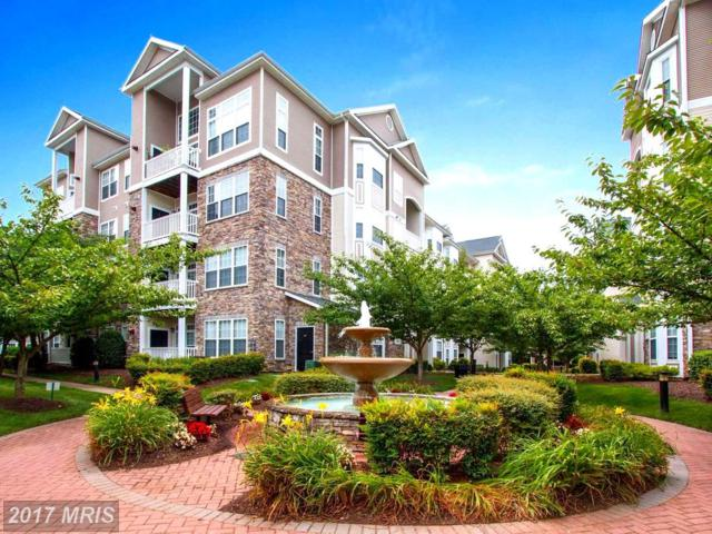 508 Sunset View Terrace SE #205, Leesburg, VA 20175 (#LO10005680) :: LoCoMusings