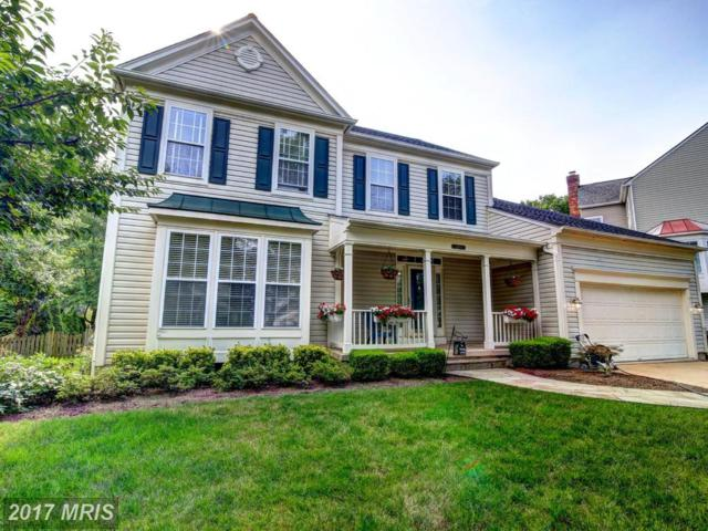 21493 Hearthstone Court, Broadlands, VA 20148 (#LO10005867) :: Wicker Homes Group