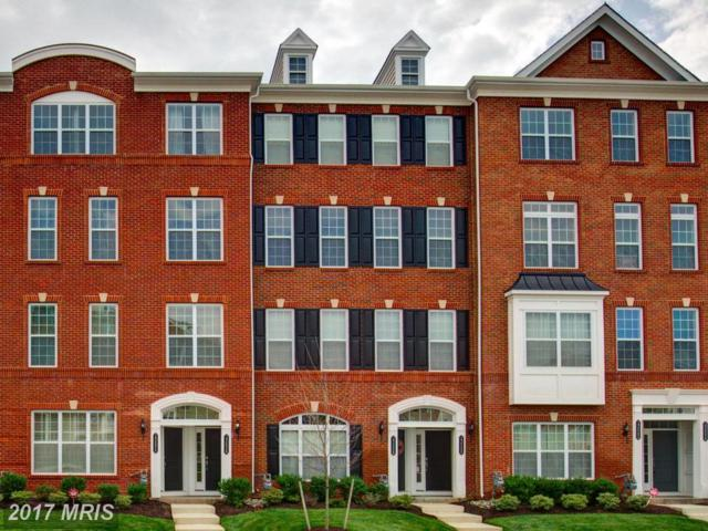 23536 Belvoir Woods Terrace, Ashburn, VA 20148 (#LO10006916) :: LoCoMusings