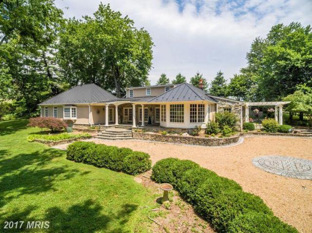 22533 Fox Lair Lane, Middleburg, VA 20117 (#LO10007260) :: LoCoMusings