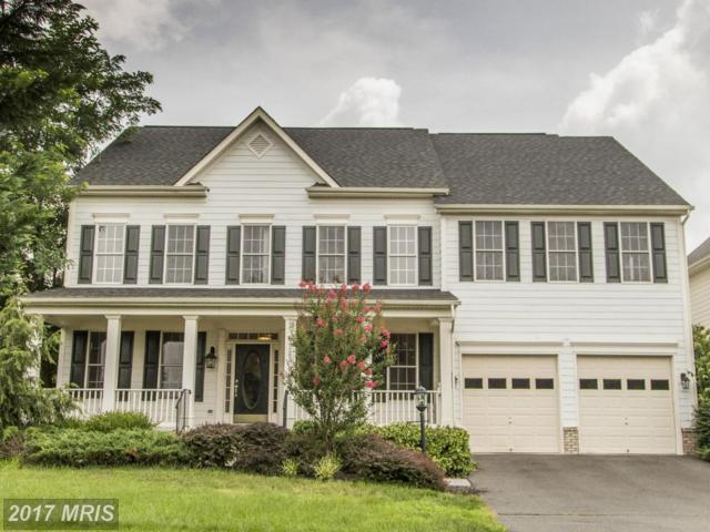 19283 Mill Site Place, Leesburg, VA 20176 (#LO10007944) :: Wicker Homes Group