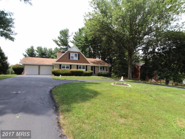 17737 Silcott Springs Road, Purcellville, VA 20132 (#LO10008533) :: Century 21 New Millennium