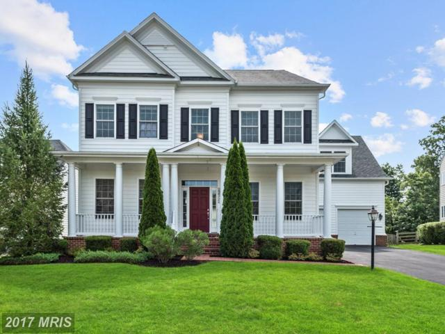 22392 Nickman Way, Leesburg, VA 20175 (#LO10008916) :: LoCoMusings