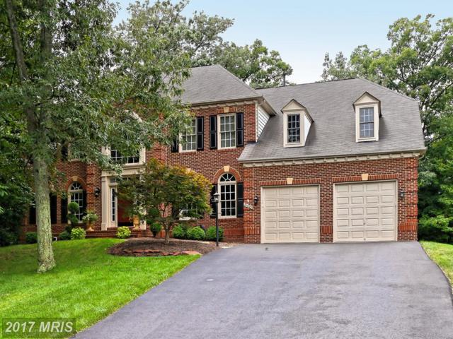 21025 Glendower Court, Ashburn, VA 20147 (#LO10009185) :: Wicker Homes Group