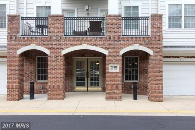 20810 Noble Terrace #208, Sterling, VA 20165 (#LO10009983) :: LoCoMusings