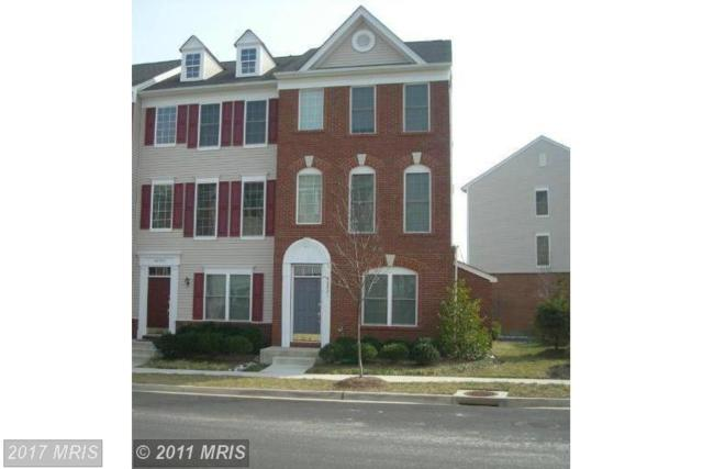 42831 Sykes Terrace, Chantilly, VA 20152 (#LO10010647) :: Century 21 New Millennium